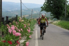 edelweiss_cicloescursionismo29