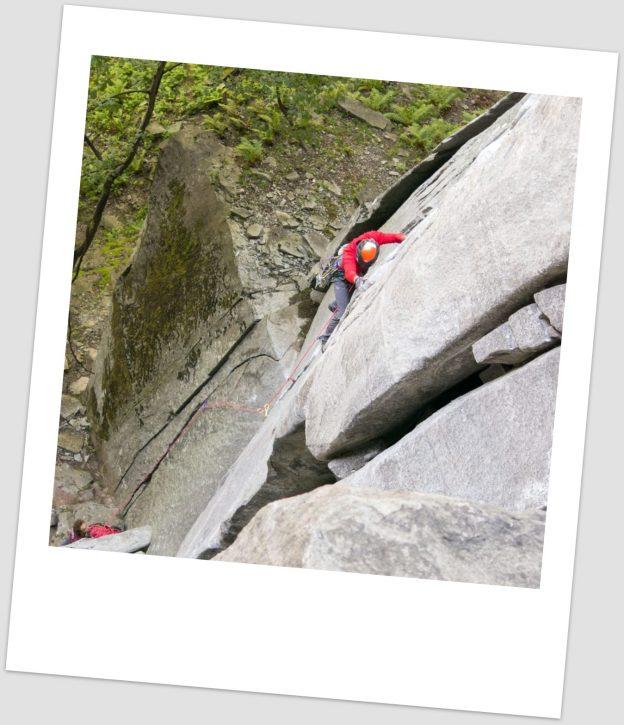 Edelweiss - Alpinismo