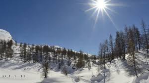 Cai Edelweiss - Racchetta da neve