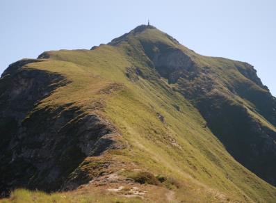Edelweiss -Monte Zerbion